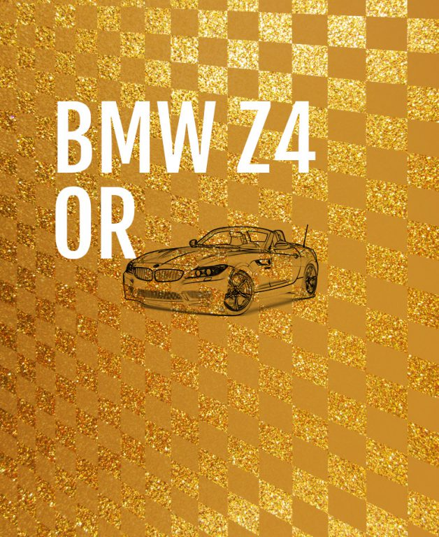 Formula Kids - BMW Z4