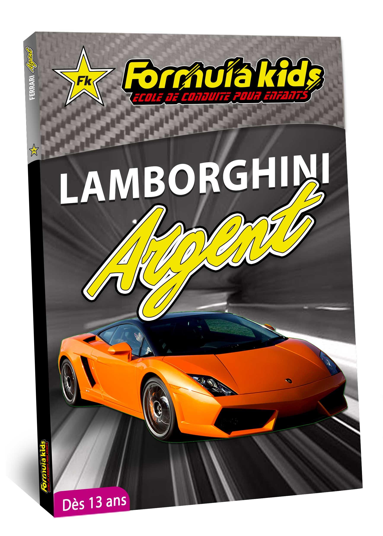 Lamborghini Argent - Conduire une Lamborghini dès 13 ans - Formula Kids - Stage de conduite enfant