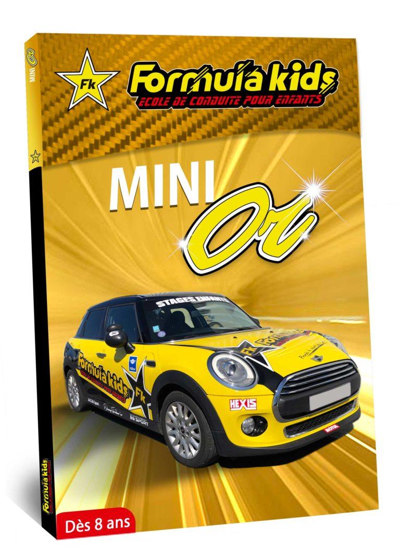 Mini Or - Conduire une Mini dès 8 ans - Formula Kids - Stage de conduite enfant