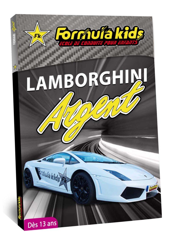 Lamborghini Argent - Conduire une Lamborghini dès 7 ans - Formula Kids - Stage de conduite enfant - Stage de pilotage sur As'Phalte - Stage Junior - Gallardo LP 560 - Cadeau - Idée anniversaire - Smart Box - Idée Cadeau - Loisir - Famille